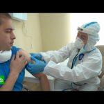 Российскую вакцину от коронавируса ждет третья фаза испытаний