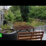 Озеленение крыш: в России набирает популярность новый вид ландшафтного дизайна