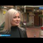 В Петербурге заметно увеличилось количество крыс