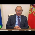 Путин поручил запретить вывоз ценного леса из России