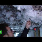 Мерзлота деградирует: чем опасно таяние вечных льдов