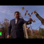 Депутатам Заволжья грозит до 7 лет тюрьмы за спиленные клены